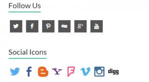 Social Icon Plugin